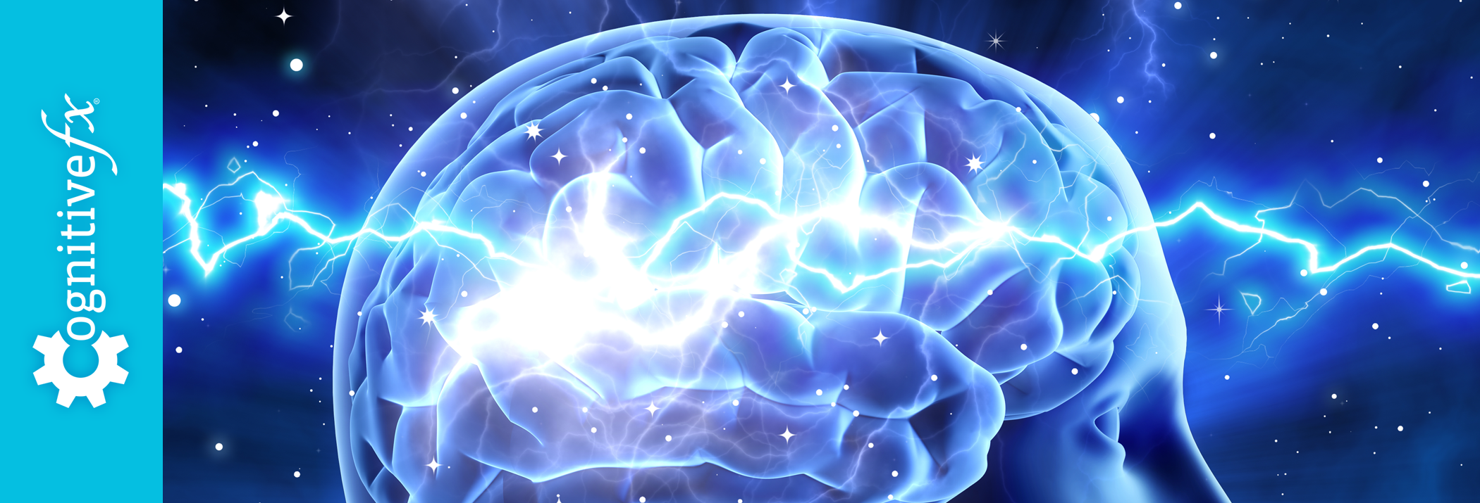 The Truth About Neuroplasticity